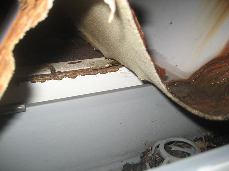 集水器と天井裏